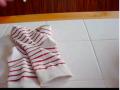 袜子该怎么叠 (139播放)