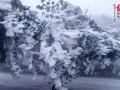 桂林资源出现雾凇美景 观赏雾凇景观路线公布(图)